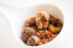 煮熟的蜗牛 库存图片