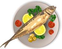 煮熟的鱼和未加工的蔬菜在板材 免版税库存图片