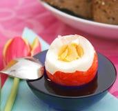 煮熟的鸡蛋 免版税库存照片