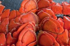 煮熟的龙虾仁 库存照片