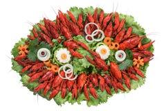 煮熟的龙虾 图库摄影