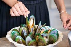煮熟的绿色壳淡菜 库存图片