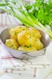 煮的土豆 库存照片