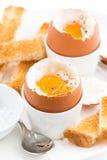 水煮蛋和酥脆多士早餐,垂直 库存照片