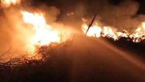 熄灭火的救助者队在晚上 影视素材