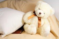 熊乳脂状逗人喜爱 免版税库存照片