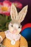 熊兔宝宝复活节女用连杉衬裤 免版税库存照片
