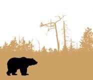 熊剪影向量 库存例证