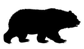 熊剪影 免版税库存照片