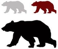 熊剪影 免版税图库摄影