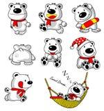 熊动画片收集白色 免版税库存照片