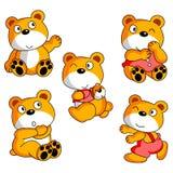 熊动画片收集 免版税图库摄影