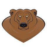熊北美灰熊动画片头 库存例证