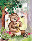 熊吃蜂蜜 免版税库存图片
