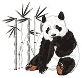 熊和没色的竹子 向量例证