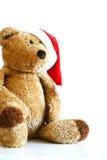 熊圣诞节女用连杉衬裤 库存照片