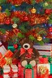 熊在圣诞树下 图库摄影