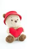 熊在白色背景的爱举行红色心脏 免版税库存照片