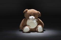 熊在黑背景中 免版税库存图片