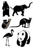 熊大象火鸟袋鼠考拉熊猫 库存图片