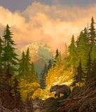 熊岩石北美灰熊的山 库存照片