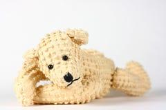 熊抛光 免版税库存图片