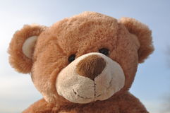 熊最逗人喜爱的女用连杉衬裤 免版税库存图片