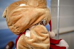 熊服装的害羞的女孩 免版税库存图片