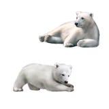 熊极性休息 在水下的企鹅国王 免版税库存图片