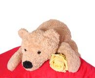 熊枕头 免版税库存照片