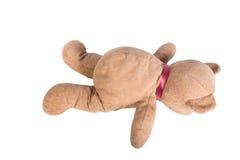 熊棕色女用连杉衬裤 免版税库存图片
