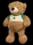 熊棕色玩具 免版税库存照片