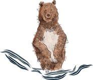 熊沐浴 库存照片