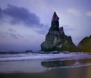 熊海滩模式摄影  免版税图库摄影