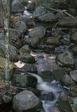 熊溪-熊溪国家公园, NH 图库摄影