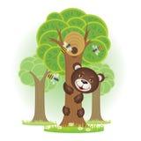 熊爬蜂蜜的一棵树 免版税库存照片