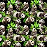 熊猫在水彩样式的野生动物样式 向量例证