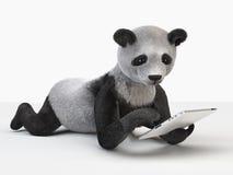 熊猫字符要人单独毛茸的动画片逗人喜爱的快乐的人 图库摄影