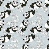 熊猫无缝的样式 库存照片