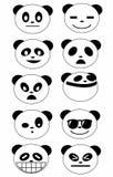 熊猫面孔表示 库存图片