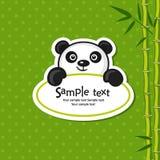 熊猫 库存照片