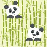 熊猫 向量例证