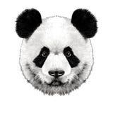 熊猫头 库存例证