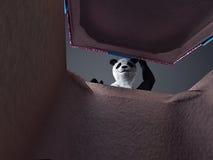 熊猫animail字符礼物盒站立在黑暗的背景的惊奇假日 免版税库存照片