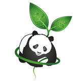 熊猫eco标志 免版税图库摄影