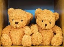 熊玩偶夫妇 图库摄影