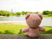 熊玩偶放松 免版税库存图片