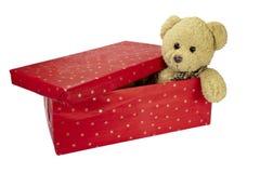 熊生日配件箱圣诞节礼物女用连杉衬&# 免版税库存图片