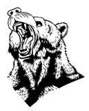 熊的头 免版税库存图片
