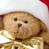 熊盖帽圣诞节圣诞老人女用连杉衬裤 库存图片